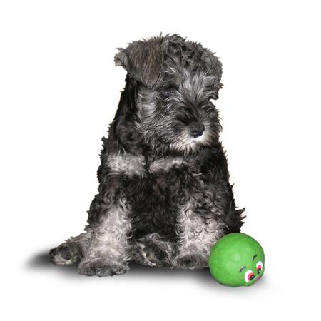 Jeppe og grønn ball